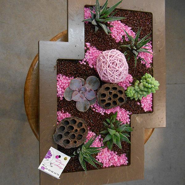 composition plantes grasses rose marron. Black Bedroom Furniture Sets. Home Design Ideas