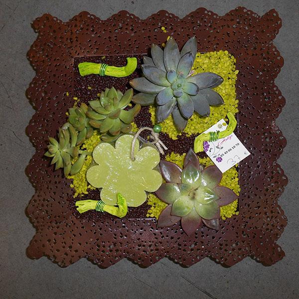 composition plantes grasses vert marron. Black Bedroom Furniture Sets. Home Design Ideas